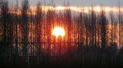 Auringonnousu Ylihärmän Liinamaassa.