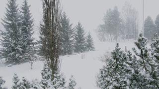 Sakea lumimyräkkä Seinäjoella.