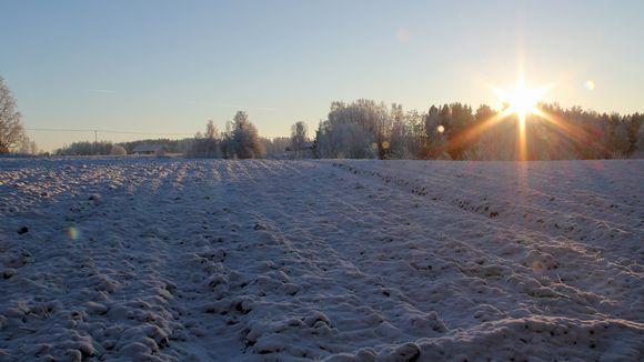 Kuvassa talvinen pelto pakkasella. Aurinko laskee metsänreunan taakse.