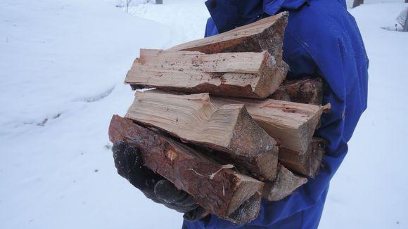 Auttaja-Aslak tarjoaa kotiapua, esimerkiksi polttopuiden kantoa.