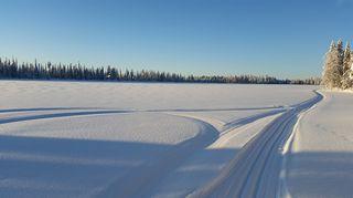 Maaninkavaaran Lauttajärvi