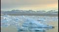 Arktinen merialue