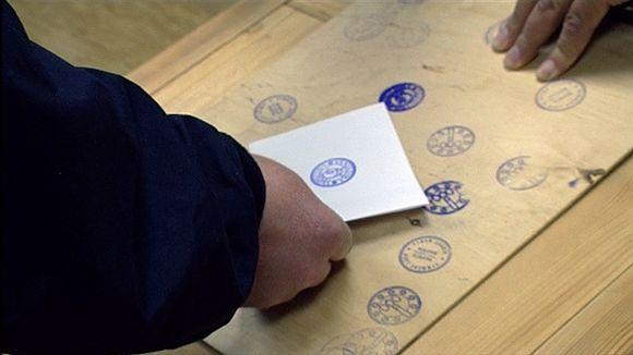 Vaalilipuke, kuntavaalit 2008