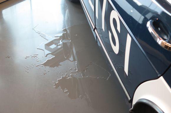 Vesilammikko poliisiauton alla.
