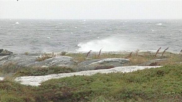 Selkämeren ranta.