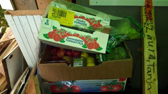 Taideslummissa on laatikoittain ruokaa, joka on haettu roskiksista.