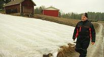 Mies kävelee pellon laidalla