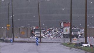 Kuorma-autoja Topinojan kaatopaikalla.