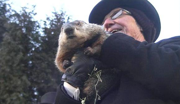 Video: Punxsutawney Phil oli huomion keskipisteenä 2. helmikuuta vietettävänä murmelipäivänä USA:n Pennsylvaniassa.