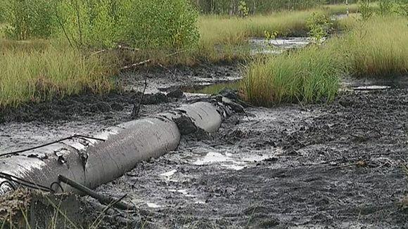 Video: Öljyputki