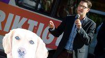 Ruotsidemokraattien puheenjohtaja Jimmie Åkesson puhui vaalitilaisuudessa Södertäljessä 4. syyskuuta.