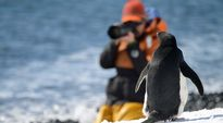 Kuvaaja Etelämantereella