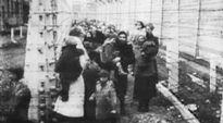 Vankeja Auschwitzin keskitysleirillä.