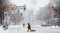 Koiranulkoiluttaja ylittää katua lumisessa maisemassa.