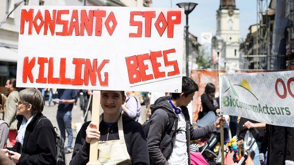 Monsanton vastainen mielenosoitus Morgesin kaupungissa Sveitsissä 22. toukokuuta.
