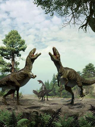 Piirroskuva neljästä dinosauruksesta tepastelemassa ja karjumassa.