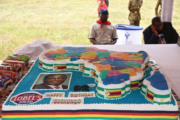Afrikan muotoinen syntymäpäiväkakku.