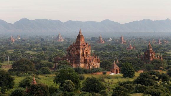 Yleiskuva, jossa näkyy useita buddhalaisia temppeleitä, jotka nousevat vihreän kasvillisuuden yläpuolelle.
