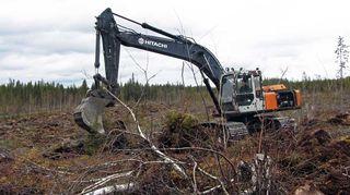 Kaivuri metsätöissä