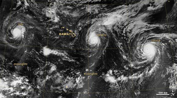 Kolme samanaikaista 4-luokan hirmumyrskyä Tyynellämerellä elokuussa 2015