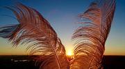 Sääkuva: Huipulla tuulee