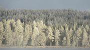Sääkuva: Talvinen maisema