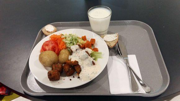 Ruokatarjotin opiskelijaruokalassa
