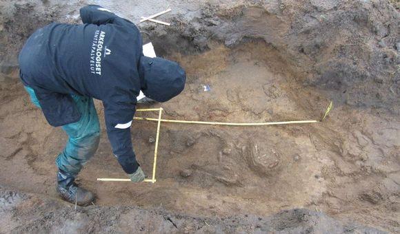 Tutkija mittaa ristiretkiajan ruumishautalöytöä marraskuun alussa 2013 Janakkalassa