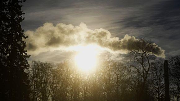 Talvinen pakkaspäivä Helsingin Hietaniemessä
