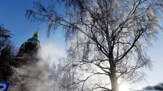Kuurainen puu ja Uspenskin katedraali kylmässä pakkassäässä Helsingissä.