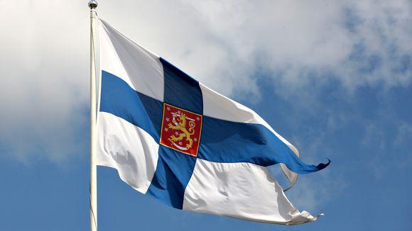 Puolustusvoimien lippu.
