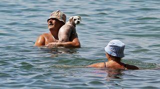 Mies, nainen ja koira uimassa.
