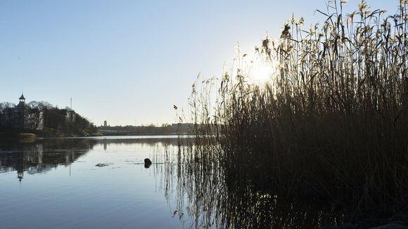 Aurinko paistaa Töölönlahdella.