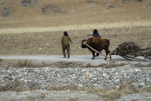 Pohjois-Korean maaseutua