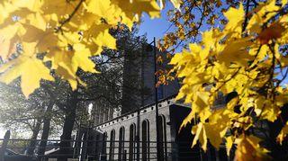 Vaahtera loisti keltaisena eduskuntatalon edustalla 15. lokakuuta.