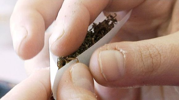 Kannabissätkän kääriminen
