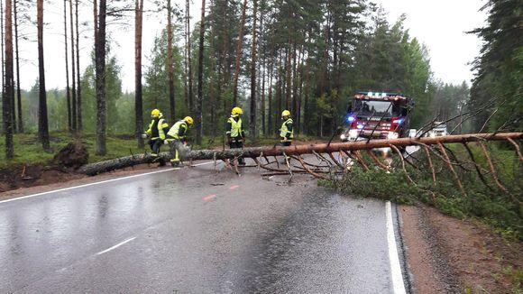Pelastuslaitos raivaa tielle kaatunutta puuta Miehikkälässä.