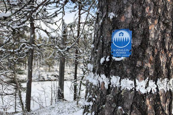 Urho Kekkosen kansallispuisto luminen maisema.