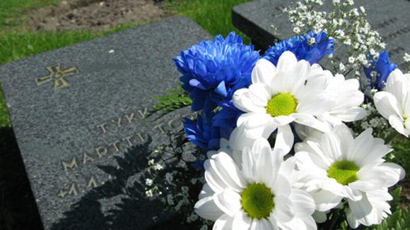 Sinivalkoisia kukkia sodassa kaatuneen haudalla kaatuneitten muistopäivänä 16.5.2010.