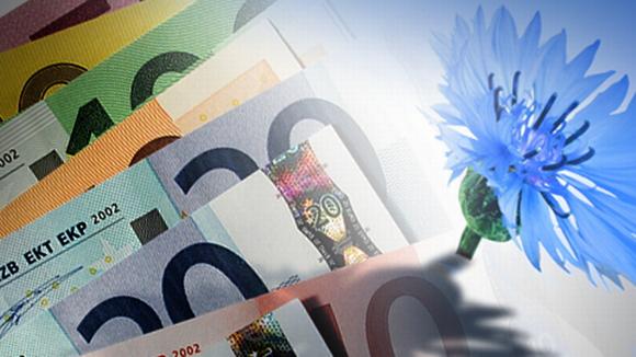 Kokoomuksen ruiskukka ja seteleitä