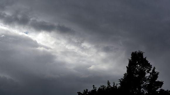 Tummat pilvet puiden yllä.