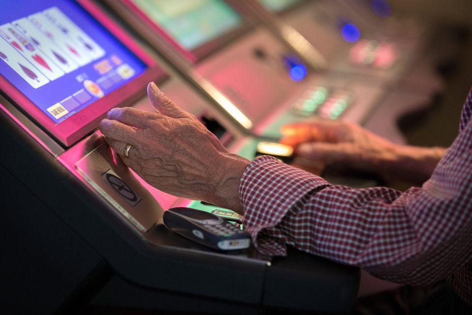 Дельфины играть онлайн бесплатно игровые автоматы