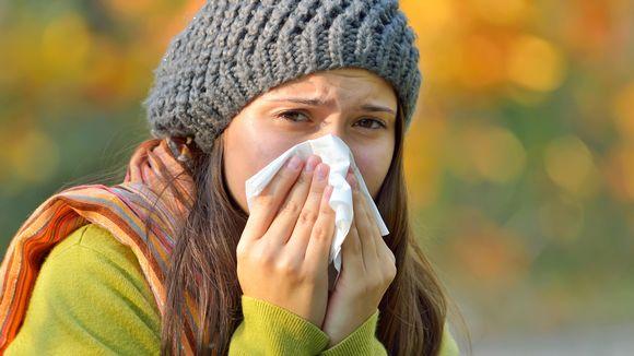 Allerginen niistää.