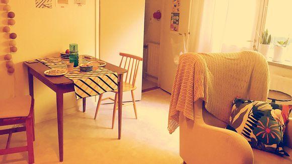Pienen asunnon olohuone.