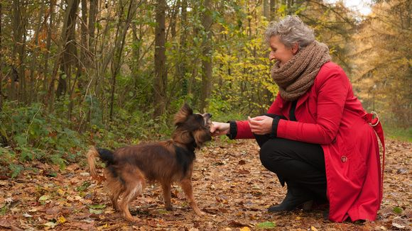 Eläkeläinen naienen ja koira syksyisessä metsässä.