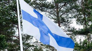 suomen lippu liehuu mäntyjen edessä