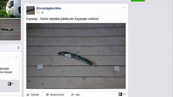 Ruutukaappaus Ennustajakurkun Facebookista.