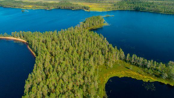 Tiilikkajärven kansallispuistoa kuvattuna ilmasta