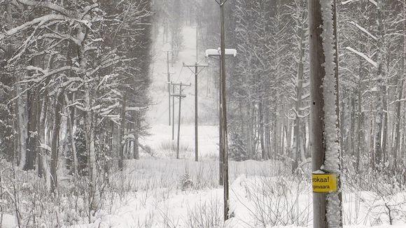 sähkölinja metsässä johtoaukko