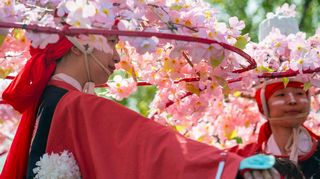 Cherry blossom headdresses
